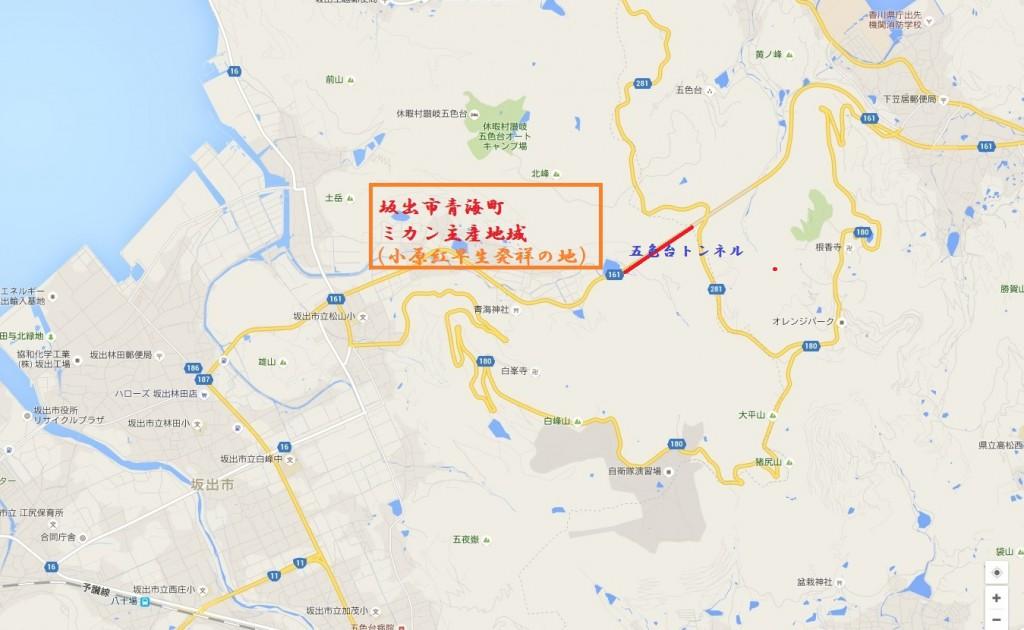 青海町のミカン栽培地域