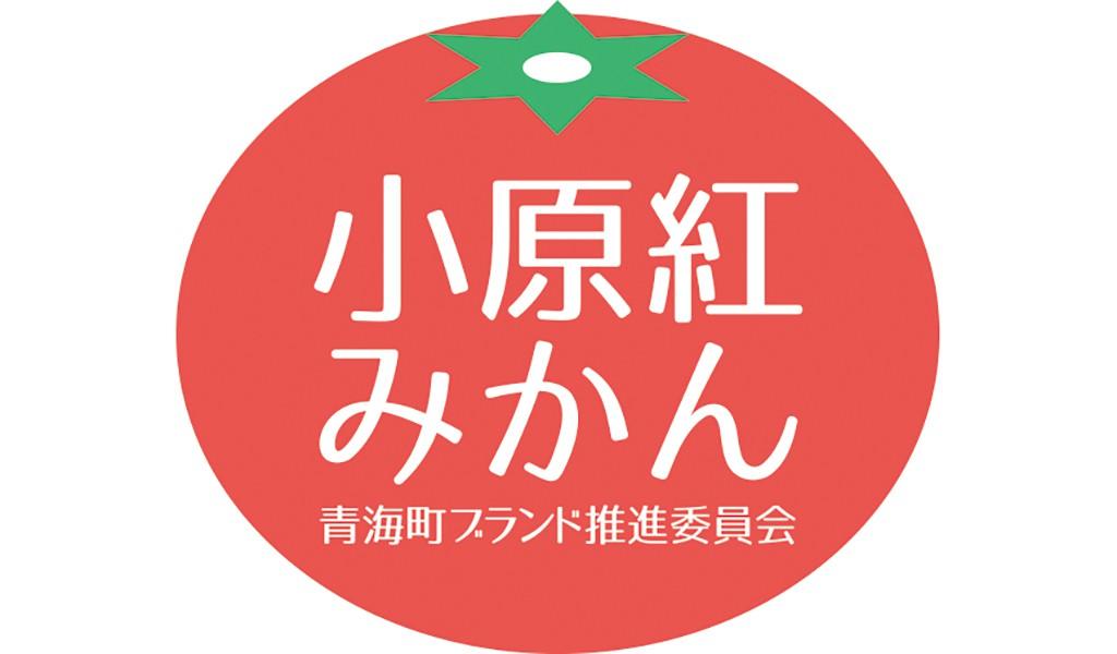 logo.jpg - コピー